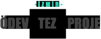 İzmir Ödev Tez Proje